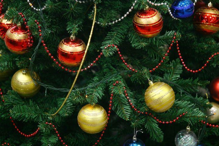 """Der """"lebende Christbaum"""", der im Topf nach Hause kommt, hält bei richtiger Pflege natürlich wesentlich länger."""