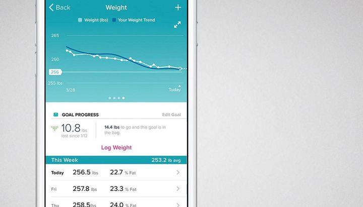 So zeichnet die Fitbit-App die Daten auf.