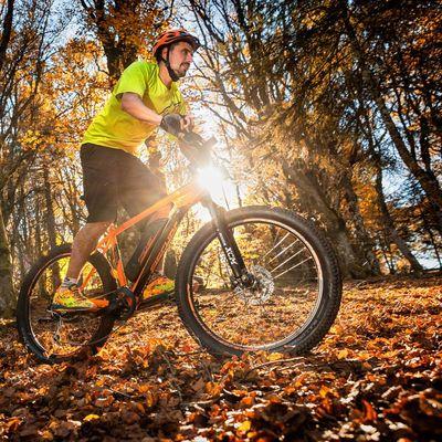E-Bike und feuchtes Laub: Vorsichtig lenken und mit weniger km/h durch den Wald fahren.