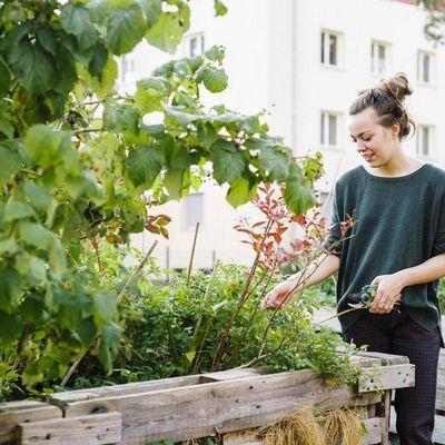 """Was ist """"Urban Gardening""""?"""