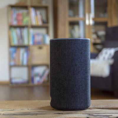 Speaker und Boxen richtigen reinigen.