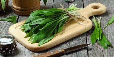 Schmackhafte Rezepte mit Bärlauch für den Kochspaß im Frühling.