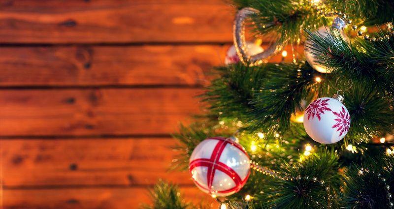 Bis Wann Bleibt Der Weihnachtsbaum Stehen.Tipps Für Den Weihnachtsbaum So Bleiben Tanne Und Fichte Schön
