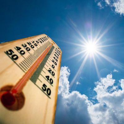 Ein Klimagerät oder einen Ventilator schafft man am besten an, bevor das Thermometer nach oben klettert.