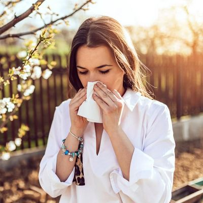 Pollenzeit: Nicht einschränken lassen, sondern Wohlfühlzone daheim einrichten.