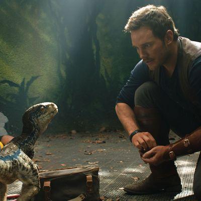 """Dinoflüsterer Owen kehrt in """"Jurassic World: Das gefallen Königreich"""" zurück."""
