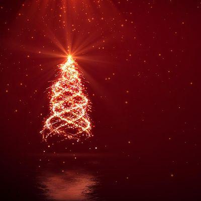 Mit diesen Lichtern wird Ihr Garten zum Weihnachtstraum.