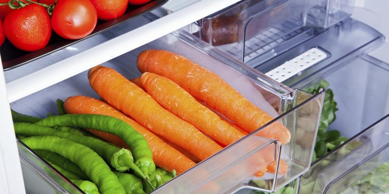 Kleine Kühlschrank-Fibel