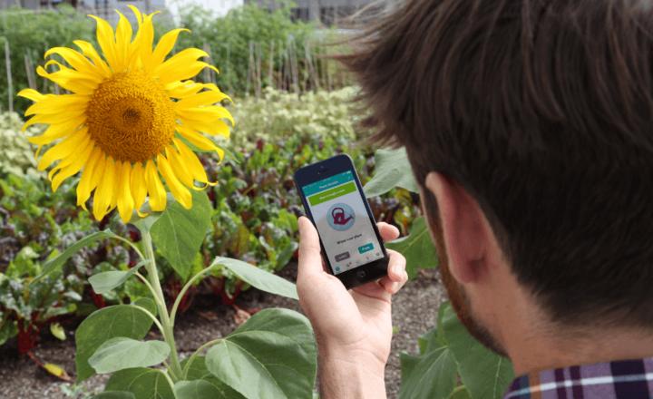 Pflanzensensor und App von Parrot