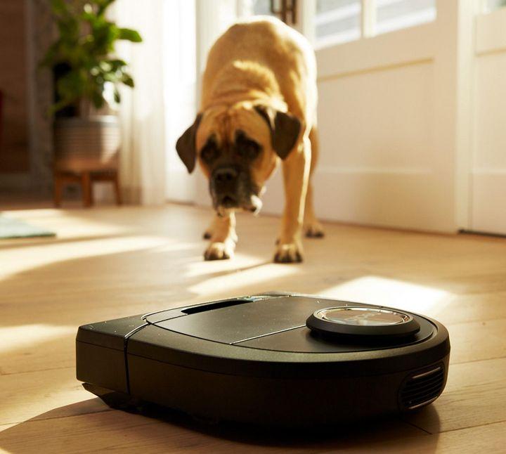 Bei gröberem Schmutz, Tierhaaren oder dicken Teppichen stoßen kleinere Saugroboter schnell an ihre Grenzen.