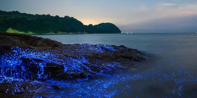 Leuchtende Naturphänomene stehen im #FollowFriday im Mittelpunkt.