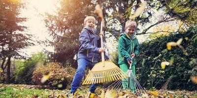 Garten-Tipps für den Herbst.
