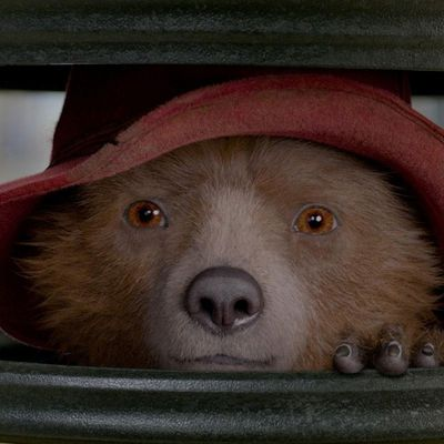 Der süße Bär ist wieder da.