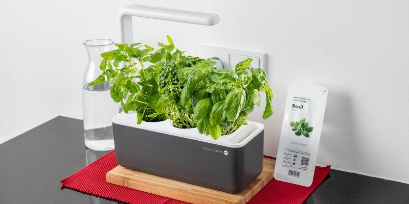 Frische Kräuter aus dem Smart Garden Click and Grow.