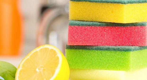 zitronen helfen beim k chenputz wirksame reinigung im haushalt. Black Bedroom Furniture Sets. Home Design Ideas