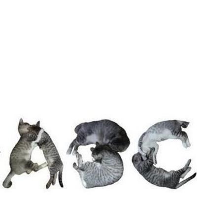 Katzenschrift