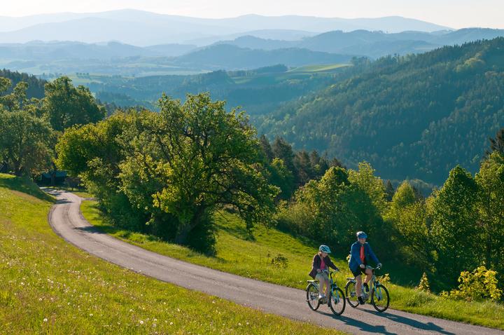 E-Bike-Touren mit unterschiedlichsten Schwierigkeitsgraden führen quer durch Österreich.