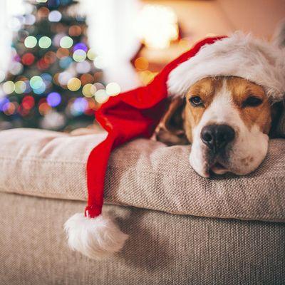Weihnachten auf Deezer