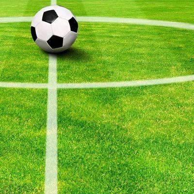 Fußballrasen