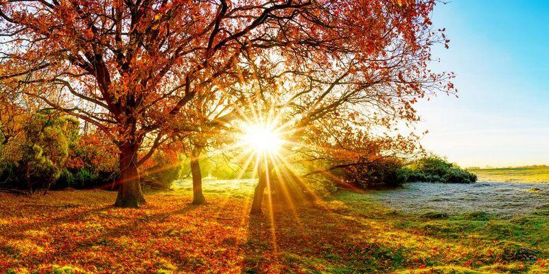 Der Herbst hält Einzug!