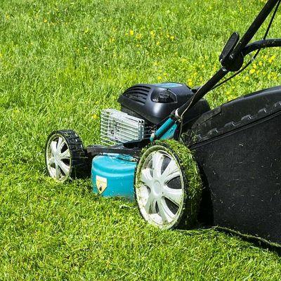 Tipps, um den Rasenmäher richtig zu reinigen.