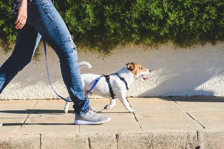 Spaziergänge regen den Kreislauf an.