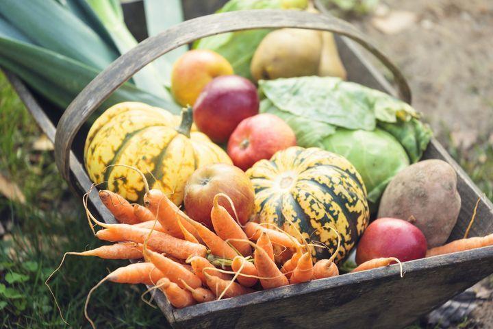 Gemüse und Obst im Herbst.