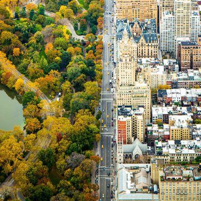 Divide: In New York trennt eine Straße den Central Park von den Gebäuden Manhattans.