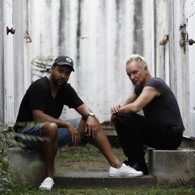 """Sting & Shaggy präsentieren ihr neues Album """"44/876""""."""
