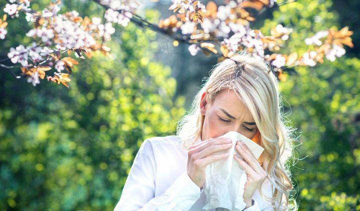 Einfache Tipps um Pollen zu reduzieren und Allergien zu lindern
