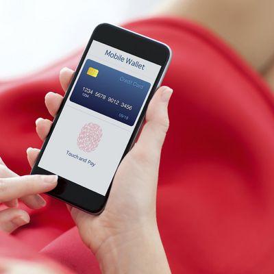 Biometrische Identifizierung