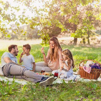 Checkliste für ein Picknick.