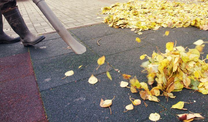 Das Laub macht im Herbst die meiste Arbeit.