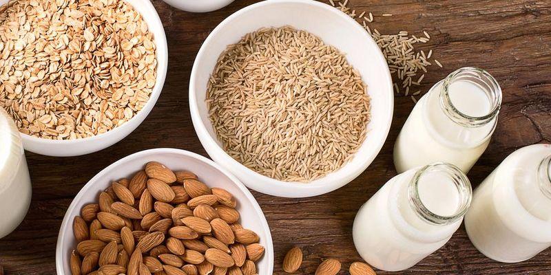 Mandel-, Hafer- und Reismilch selbst herstellen.