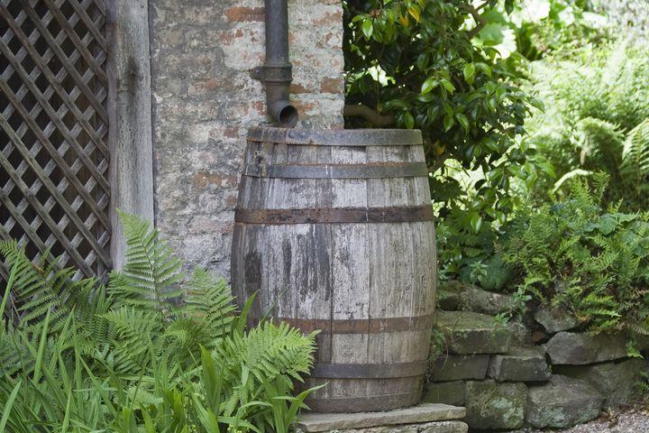 Die Regentonne bewährt sich im nachhaltigen Garten.