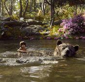 """""""The Jungle Book"""" auf Blu-ray erschienen."""