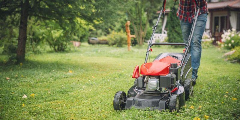 3 Tipps für einen schönen Rasen.