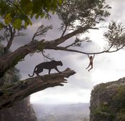 """The Jungle Book"" auf Blu-ray erschienen."