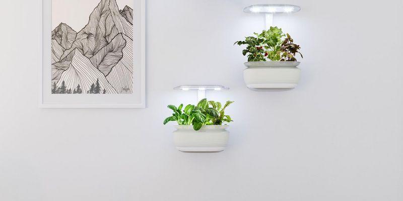 """Das Indoor-Gardening-System """"SmartGrow Life"""" von Bosch wird vollautomatisch bewässert und beleuchtet."""