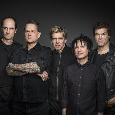 Die Toten Hosen sind nicht mehr aus der deutschen Musikszene wegzudenken.