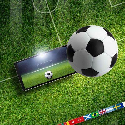 So wird das Smartphone WM-tauglich.