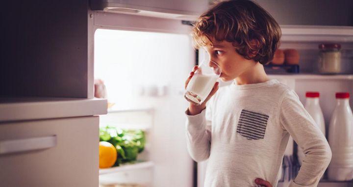 Frischmilch wird in der Mitte des Kühlschranks gelagert.