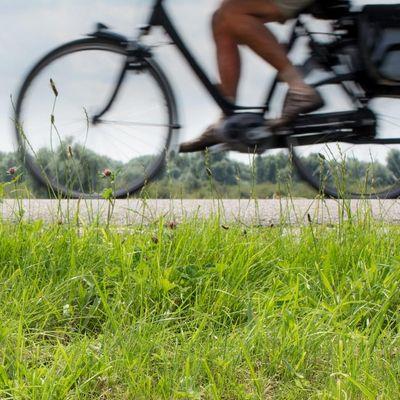 Spannende Facts zu E-Bike & Co.