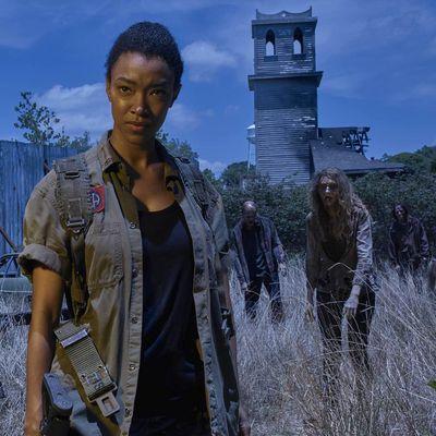 """""""The Walking Dead"""" wandeln wieder"""